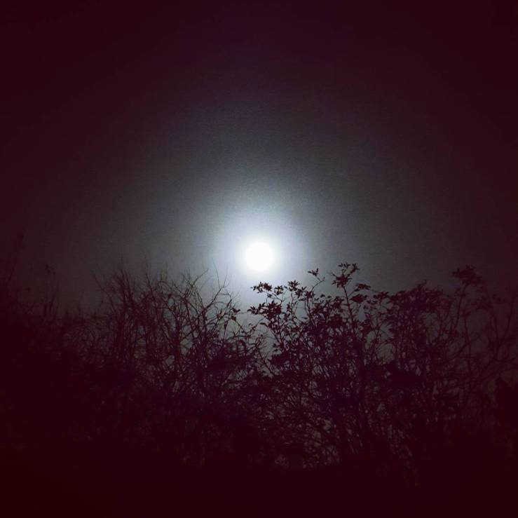 Full moon on a misty, foggy night in Dorset, England.