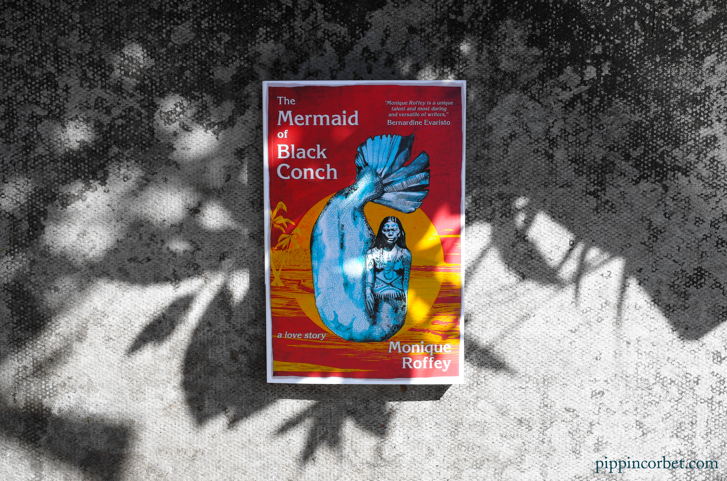 The Mermaid of Black Conch by Monique Roffey.